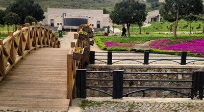 Photo of Park Aşık Veysel Rekreasyon Alanı at Bornova, İzmir, Turkey