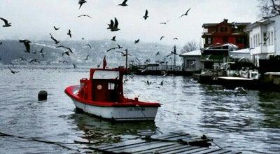 Photo of Steakhouse Balıkçı Şadi Balık Restorantı at Selağazı, Amasya 05100, Turkey