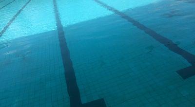 Photo of Pool สระว่ายน้ำอยุธยาวิทยาลัย at โรงเรียนอยุธยาวิทยาลัย, พระนครศรีอยุธยา 13000, Thailand