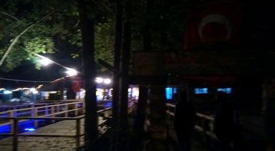 Photo of BBQ Joint Aras Alabalık Restourant at Turkey