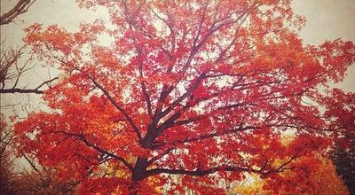 Photo of Park Oak Hill Park at 3201 Rhode Island Avenue Sout, St. Louis Park, MN 55426, United States