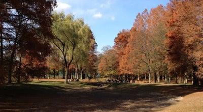 Photo of Park 秋ヶ瀬公園 at 桜区道場4-17, さいたま市 338-0835, Japan