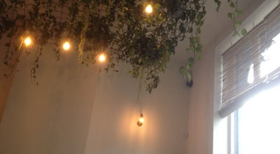 Photo of Vegetarian / Vegan Restaurant CHYL Café at Rue De Belle Vue 62, Bruxelles 1000, Belgium