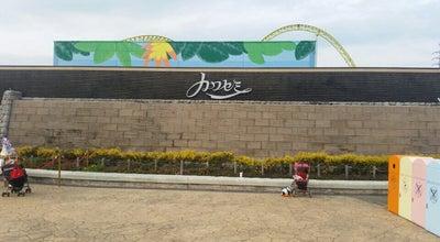 Photo of Theme Park 新滑空水上コースター カワセミ at 須賀110, 宮代町, Japan