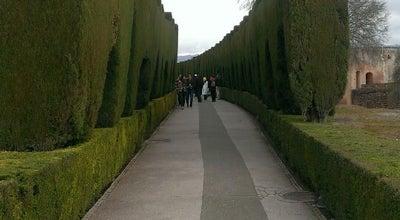 Photo of Park Bosque de La Alhambra at Cuesta De Gomérez S/n, Granada 18001, Spain