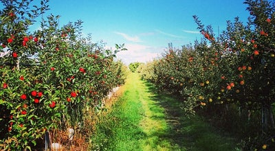 Photo of Winery Archibald Orchards at Canada