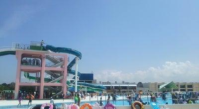 Photo of Pool 稲毛海浜公園プール at 美浜区高浜7-1-1, 千葉市 261-0003, Japan