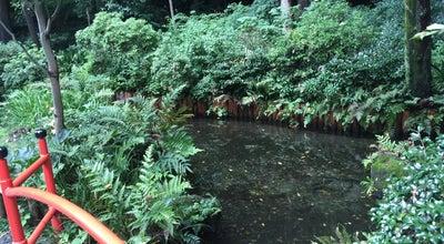 Photo of Lake 真姿の池 at 西元町1-13, 国分寺市, Japan
