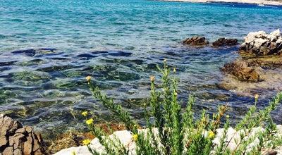 Photo of Beach mlini Beach at Croatia