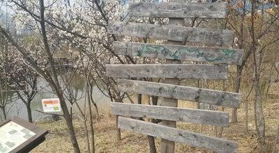 Photo of Park 두꺼비생태공원 at 대한민국 충청북도 청주시 흥덕구 산남동 669, 청주시 361-160, South Korea
