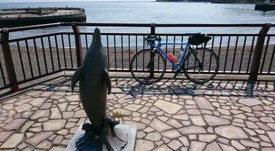 Photo of Beach 川奈いるか浜公園 at 川奈, 伊東市, Japan
