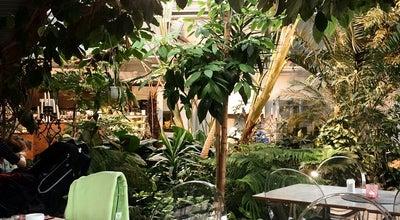 Photo of Cafe Tropikhuset at Trädgårdsföreningen, Linköping, Sweden
