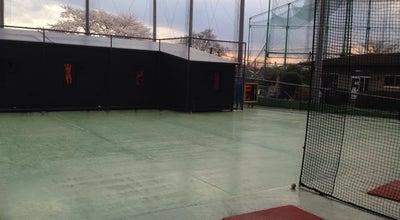 Photo of Baseball Field 北柏バッティングセンター at 布施1095-1, Kashiwa 277-0825, Japan