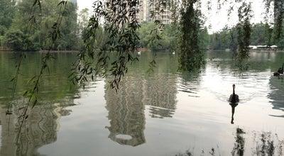 Photo of BBQ Joint 坝坝串串 at 世纪城路, 成都, 四川, China