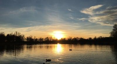 Photo of Lake Feringasee at Erlbachstr. 1, Unterföhring 85774, Germany