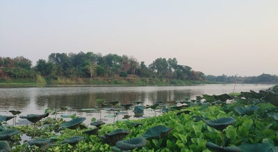 Photo of Lake ริมแม่น้ำน่าน พิษณุโลก (Rim Nan River) at Phutthabucha Rd., Mueang Phitsanulok, Thailand