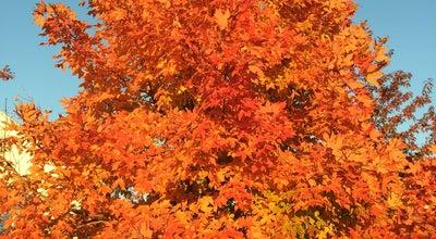 Photo of Park Lakelands Park at 1368 Main St., Gaithersburg, MD 20878, United States