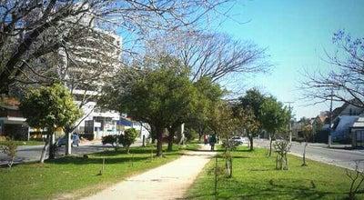 Photo of Trail Pista de Caminhada at Av. Dom Joaquim, Pelotas, Brazil