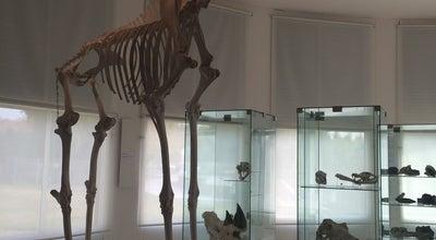 Photo of Science Museum Museo de Ciencias Naturales y Antropológicas Juan Cornelio Moyano at Parque General San Martín, Mendoza 5500, Argentina