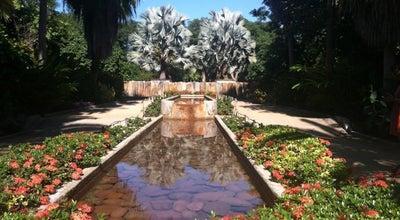 Photo of Botanical Garden Jardín Botánico Culiacán at Av. Las Américas 2131, Culiacán 80030, Mexico