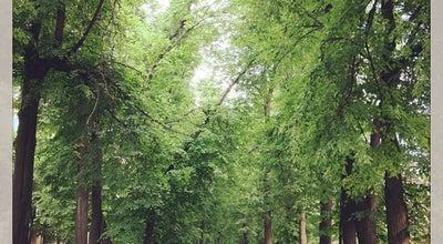 Photo of Park Садовая аллея at Ул. Садовая, Иваново, Russia