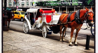 Photo of Park Central Park Carriage Horse Ride at 5th Ave & 59th, New York, NY 10022, United States