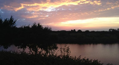 Photo of Lake Lake Riverside at 2803 Riverside Pkwy, Grand Prairie, TX 75050, United States