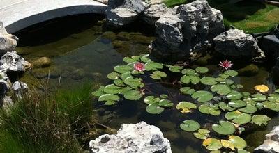 Photo of Garden Center San Gabriel Nursery & Florist at 632 S San Gabriel Blvd, San Gabriel, CA 91776, United States