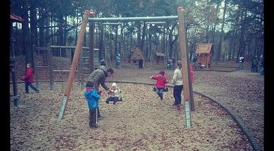 Photo of Playground Waldspielplatz Wilder Mann at Neuländer Str. 7, Dresden 01129, Germany