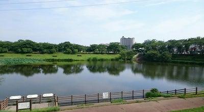 Photo of Park 御伊勢塚公園 at 伊勢原町3-3, 川越市, Japan