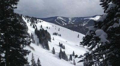 Photo of Ski Area Vail Mountain at 555 E Lionshead Cir, Vail, CO 81657, United States