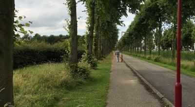 Photo of Park Burgemeester Hoekstrapark at Burgemeester Hoekstrapark, Zoetermeer, Netherlands