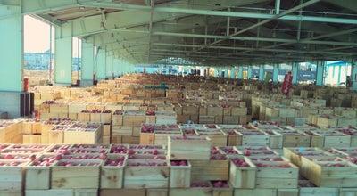 Photo of Fish Market 弘果 弘前中央青果(株) at 末広1-2-1, 弘前市, Japan