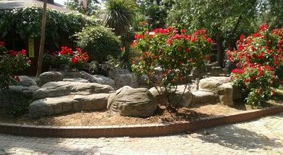 Photo of Park Milli Egemenlik Parkı at Bahçelievler, Turkey
