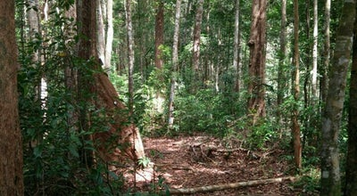 Photo of National Park Santubong National Park at Malaysia