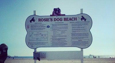 Photo of Dog Run Rosie's Dog Beach at 4800 E Ocean Blvd, Long Beach, CA 90803, United States