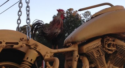 Photo of Dive Bar Bayard Rooster at 12699 Phillips Hwy, Jacksonville, FL 32256, United States