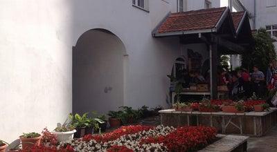 Photo of Church Manastir Krušedol at Sremski District, Krušedol Prnjavor, Serbia