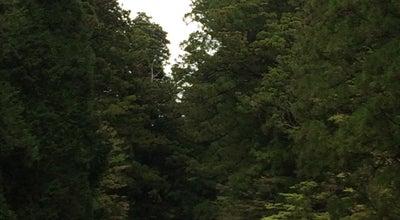 Photo of Trail 日光東照宮 表参道 at 山内2301, 日光市, Japan