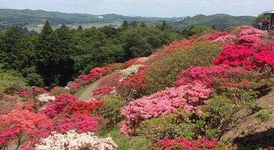 Photo of Trail つつじ山 at 笠間市, Japan