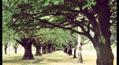Photo of Park South Hagley Park at Park Terrace, Christchurch, New Zealand
