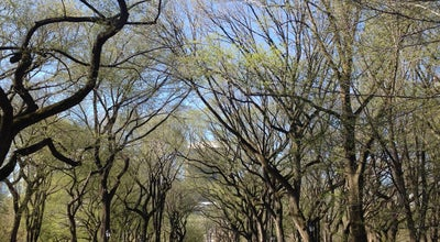 Photo of Sculpture Garden Literary Walk at 65th St., New York, NY 10022, United States