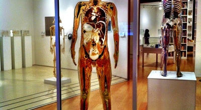 Photo of Tourist Attraction Wellcome Collection at 183 Euston Road, London NW1 2BE, United Kingdom