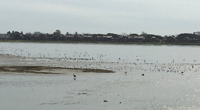 Photo of Beach Elsie Roemer Bird Sanctuary at Alameda, CA, United States