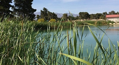Photo of Park Craig Ranch Regional Park at 628 W Craig Rd, North Las Vegas, NV 89032, United States