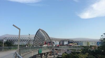 Photo of Athletics and Sports 深圳湾体育中心 Shenzhen Bay Sports Center at 南山区滨海大道3001号, Shenzhen, Gu, China