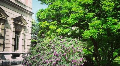 Photo of Botanical Garden Orto Botanico di Napoli at Via Foria 223, Naples 80137, Italy