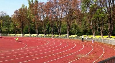 """Photo of Stadium Stadionul Tineretului """"Iolanda Balaș-Söter"""" at Str. Primo Nebiolo Nr. 2, București 011349, Romania"""