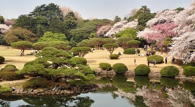Photo of Garden 新宿御苑 (Shinjuku Gyoen) at 内藤町11, 新宿区 160-0014, Japan