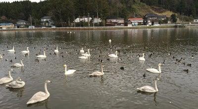Photo of Lake 長嶺大池 at 西山町長嶺, 柏崎市, Japan